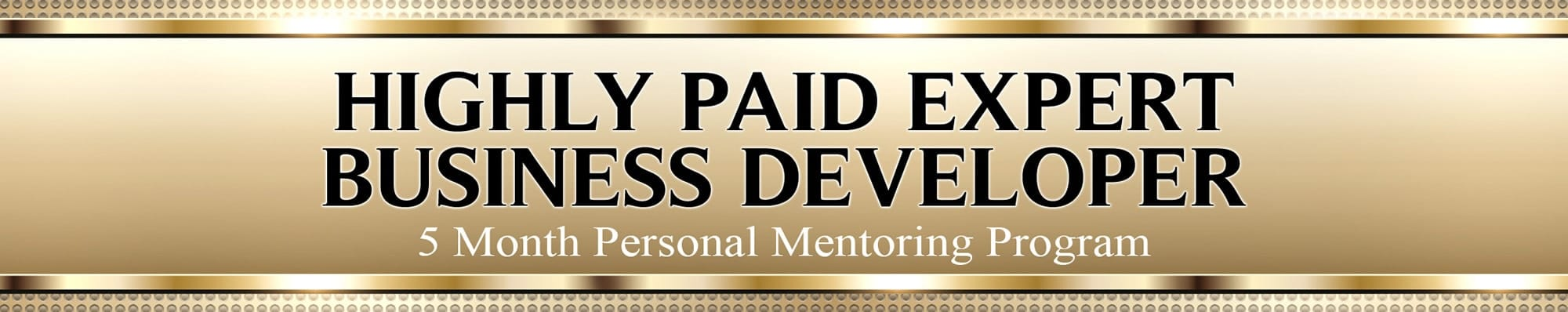 Highly Paid Expert Business Developer banner